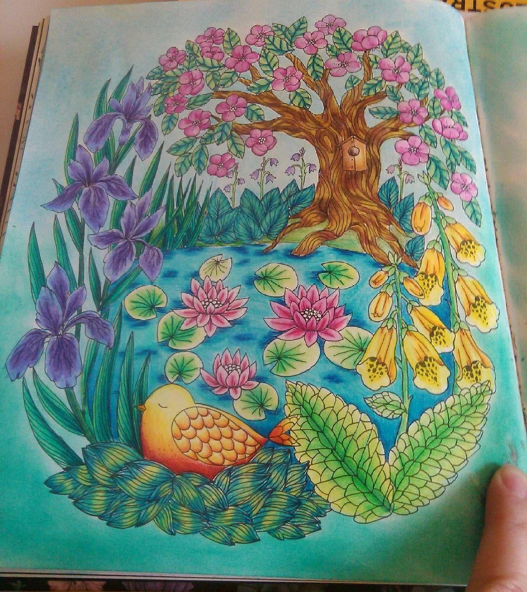 Pin On Blomstermandala Colouring Book