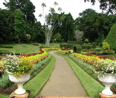 Royal Botanical Gardens Is A Popular Tourist Destination In Port Of Spain.  Explore Royal Botanical Gardens Tours, Entry Tickets, Opening Hours, Address,  ...