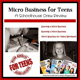 Home Grown Hearts Academy Homeschool Blog: Micro Business for Teens ~ Review