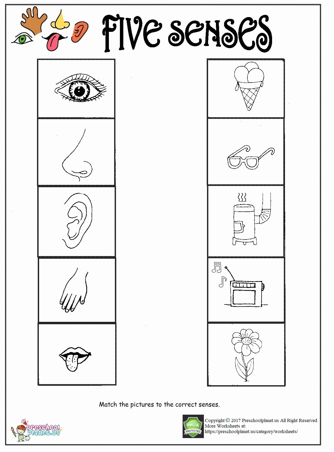 Preschool Worksheets Five Senses In