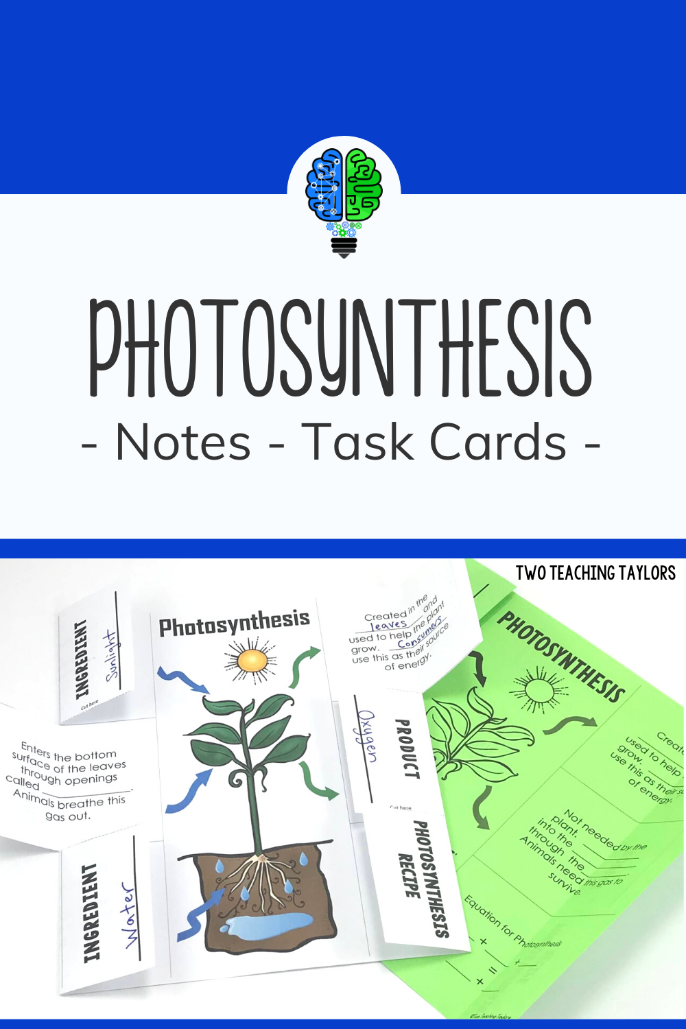 Photosynthesis Activities Foldable and Task Cards in