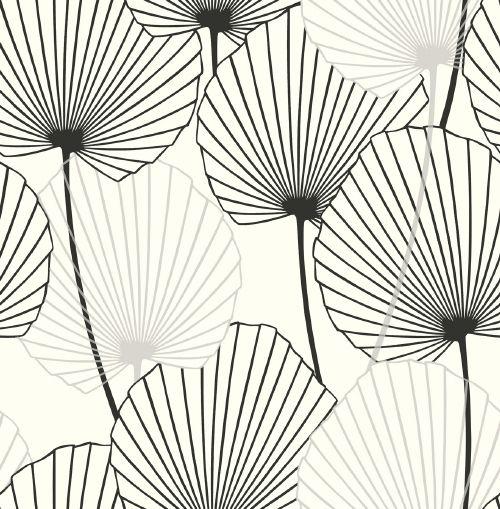 Pattern Motifs Fleurs Noir Et Blanc Dessin Black And White