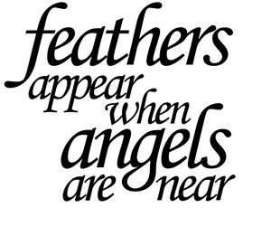 Wine Bottle Sticker Feathers appear when angels are near vinyl decal