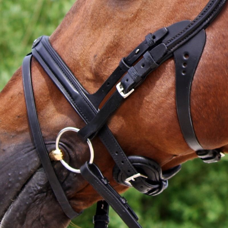 This unique Stübben bridle Freedom respects your horse\'s anatomy and ...