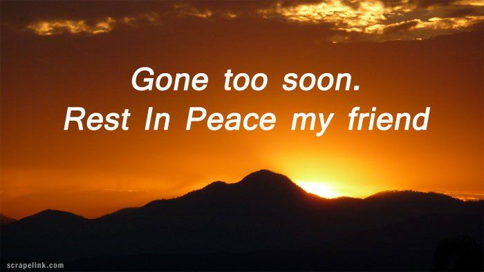 Image result for rip gone too soon quotes