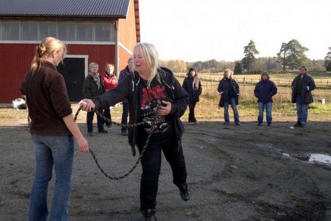 På klickerkurs för häst hos OHR