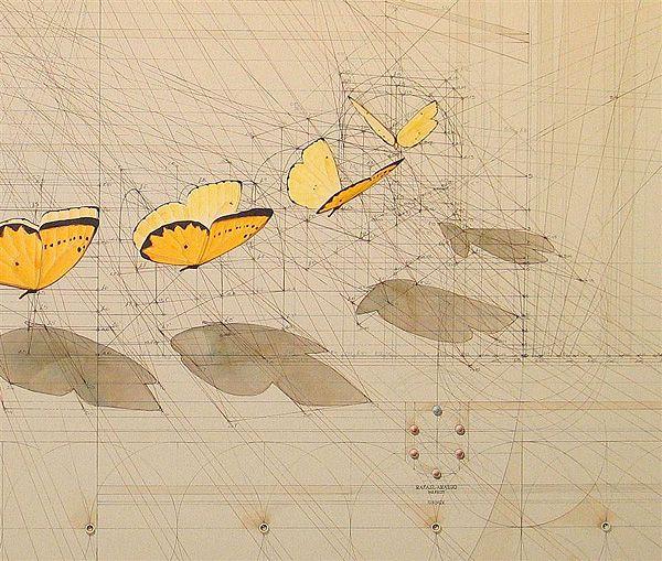 Cálculo - Criatividade geometria e matemática - Santo CriativoSanto Criativo