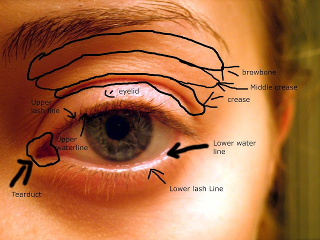 Eye diagram for easy makeup application makeup pinterest easy eye diagram for easy makeup application ccuart Gallery