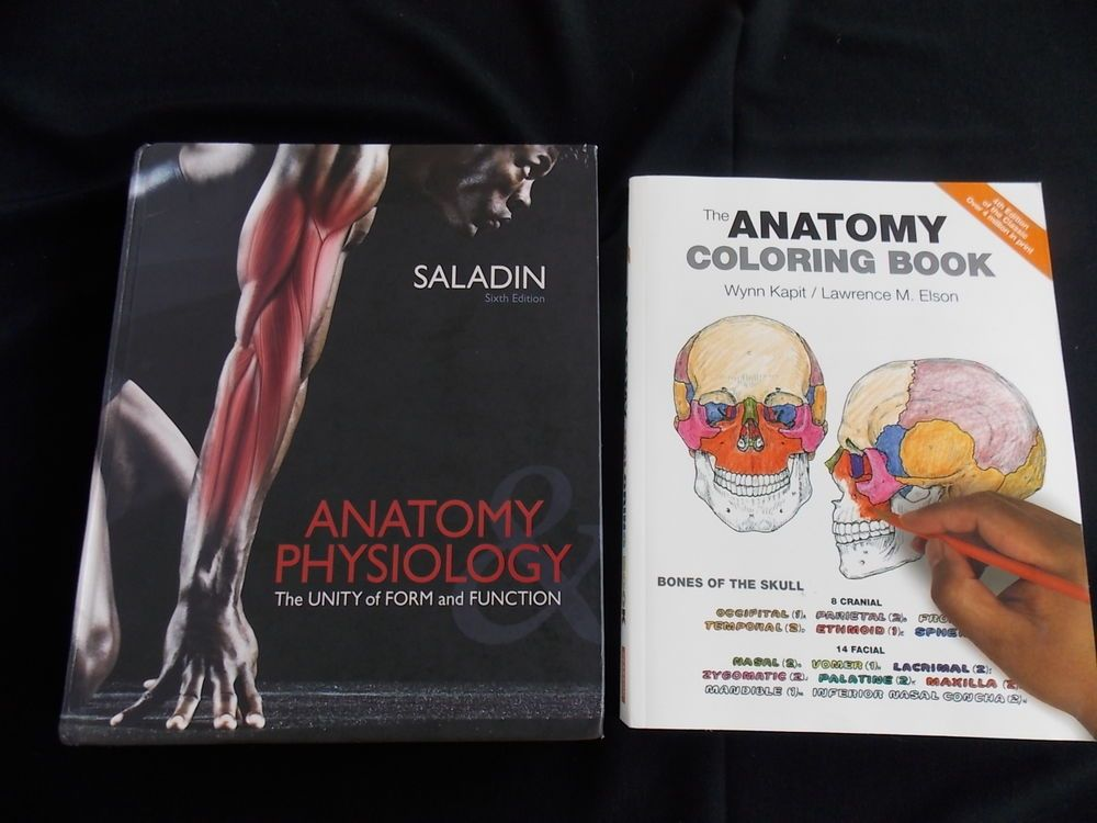 Lujoso Anatomy And Physiology Unity Of Form And Function 6th Edition ...