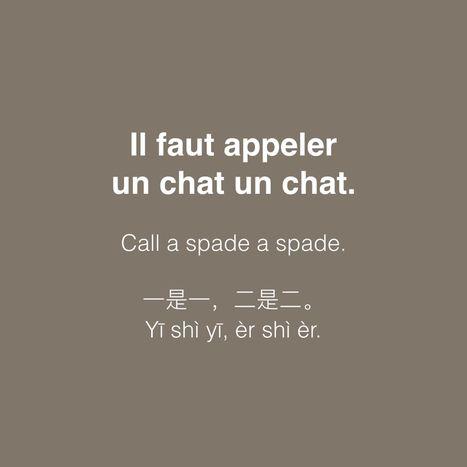 Il faut appeler un chat un chat.   Le français et vous   Scoop.it ... 756165122d4f