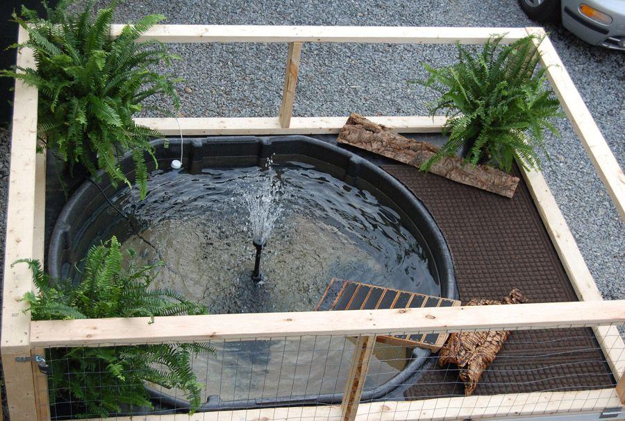 Pin By Debby Aldrich On Aquatic Turtles Turtle Pond Turtle Homes Turtle Habitat