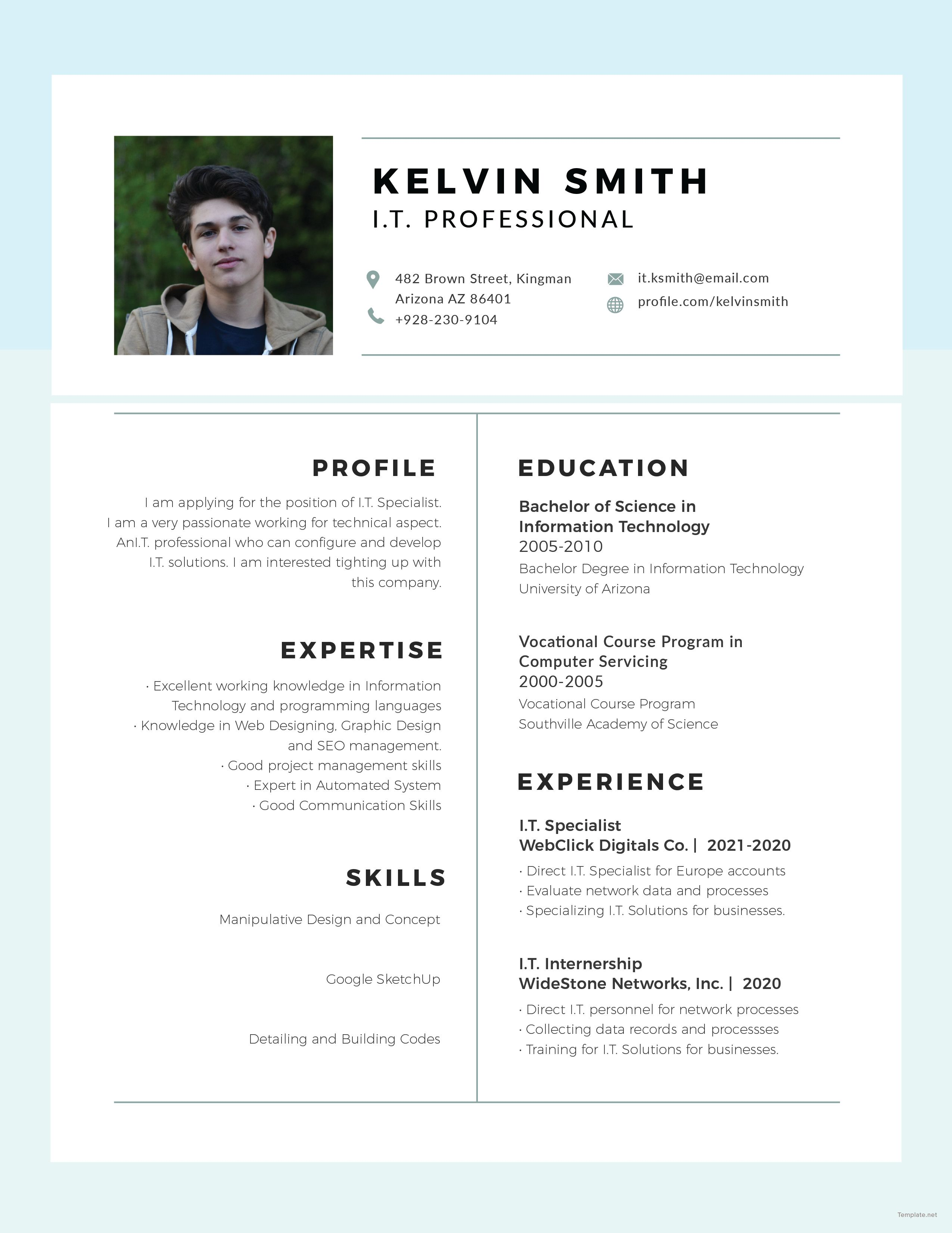 Free IT Professional Experience Resume Free professional