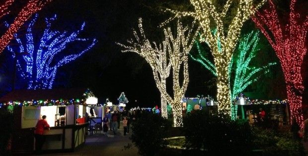 Attractive Lights At Busch Gardens Tampa Christmas Town Design Ideas
