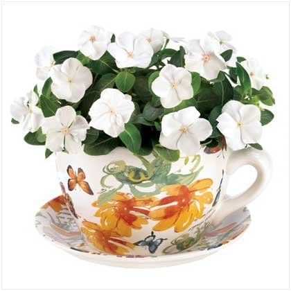 Gifts & Decor Butterfly Print Teacup Saucer Decorative Garden Planter by Gifts & Decor. $21.45