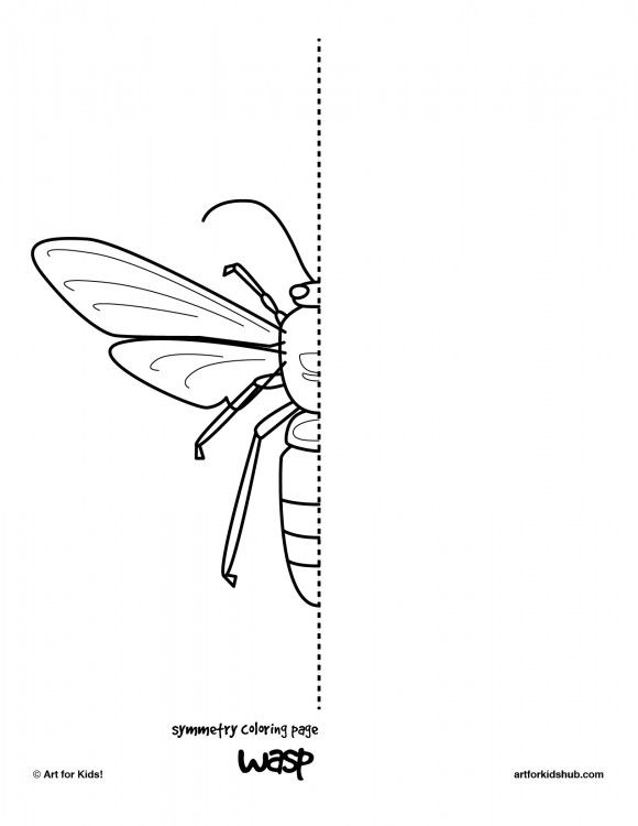 10 Free Coloring Pages - Bug Symmetry - Art For Kids Hub - | Insect ...