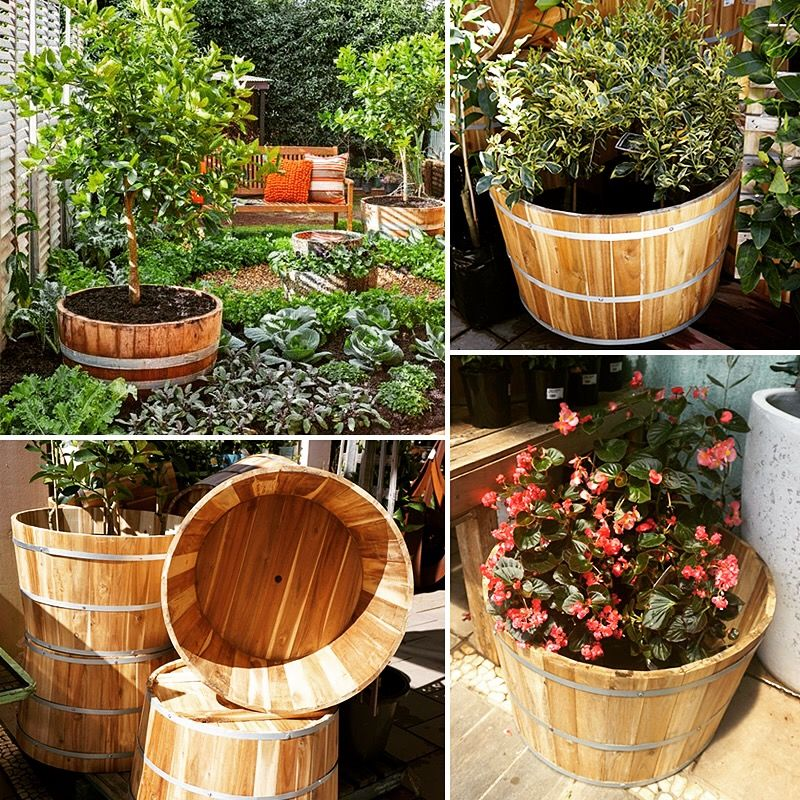 Roll Out Those Barrels 50 Off Half Wine Barrel Planters At Poppys