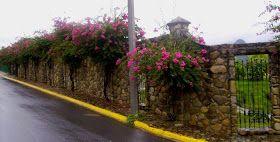 Pisos, paredes y andadores de piedra en el Noreste de México.: Barda en Santiago, Nuevo León.