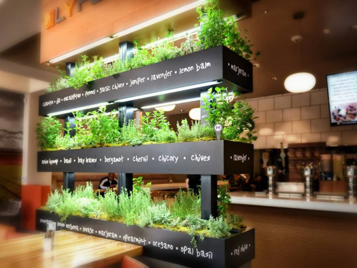 Pin By Within Studio On Project Red Restaurant Healthy