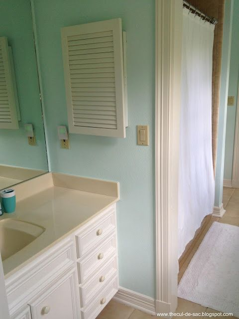 Benjamin Moore Barely Teal My Bathroom Colour In The New House