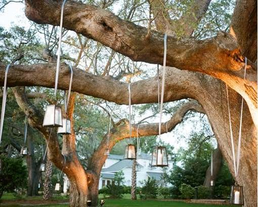 Simple Outdoor Wedding Ideas Related Posts For Tree Decorations