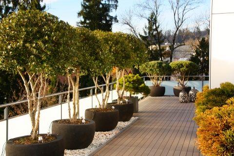 Terrasse mit Holzdeck und Duftblüte #terrasse #terrassengestaltung - elemente terrassen gestaltung