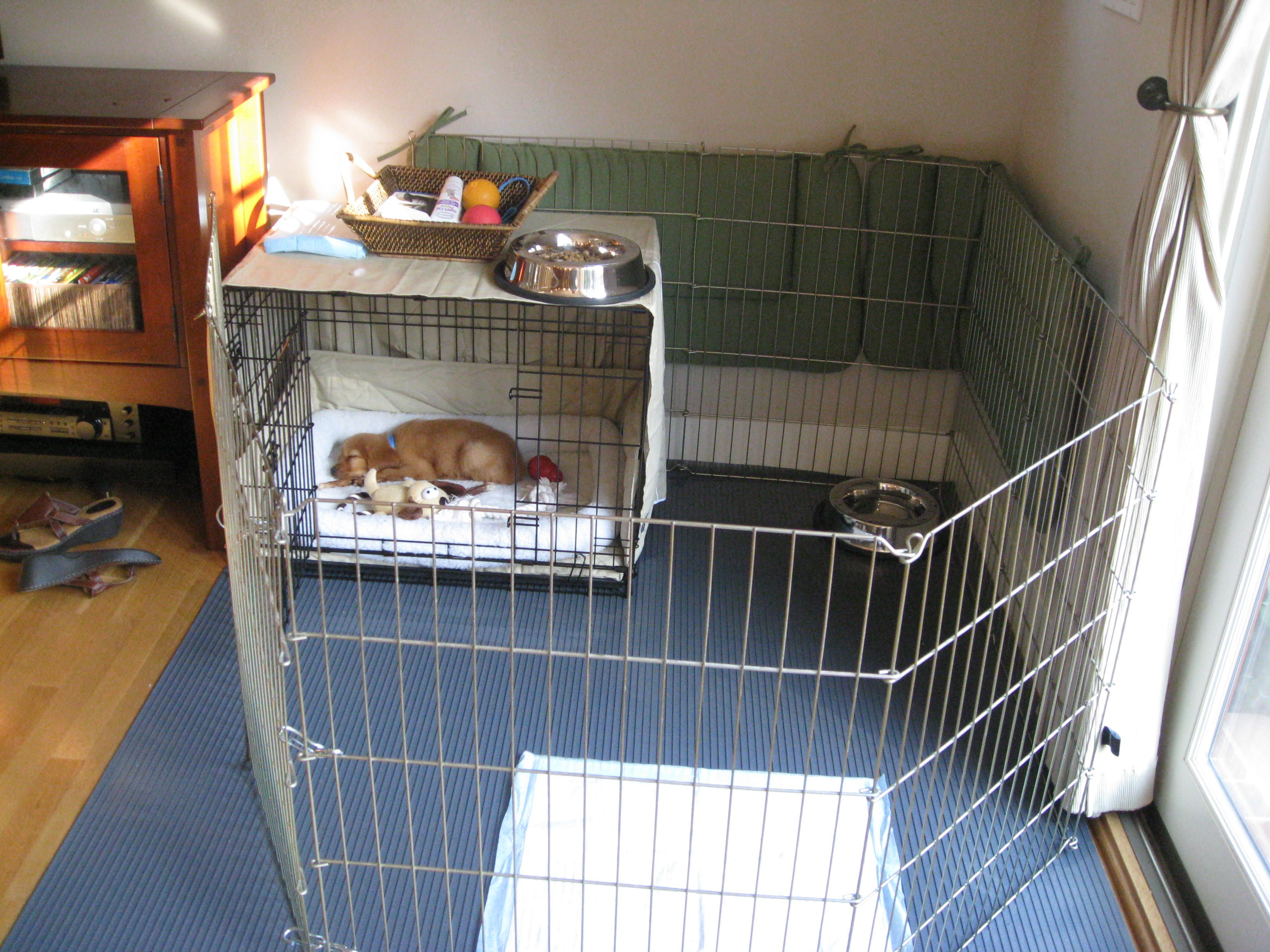Kennel Liner To Protect Hard Wood Floors And Attach Puppy Fencing To Crate Puppy Playpen Puppy Crate Baby Puppies