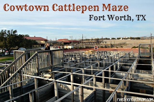 Cowtown CattlePen Maze ~ Fort Worth, Texas - R We There Yet Mom? | Family Travel for Texas and beyond...