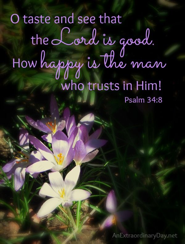 Taste and See that the Lord is Good :: Joy Day! | An Extraordinary Day | Psalms, The lord is good, Taste and see