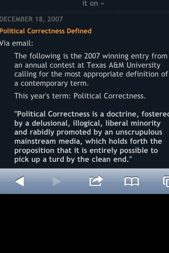 Political correctness definition turd