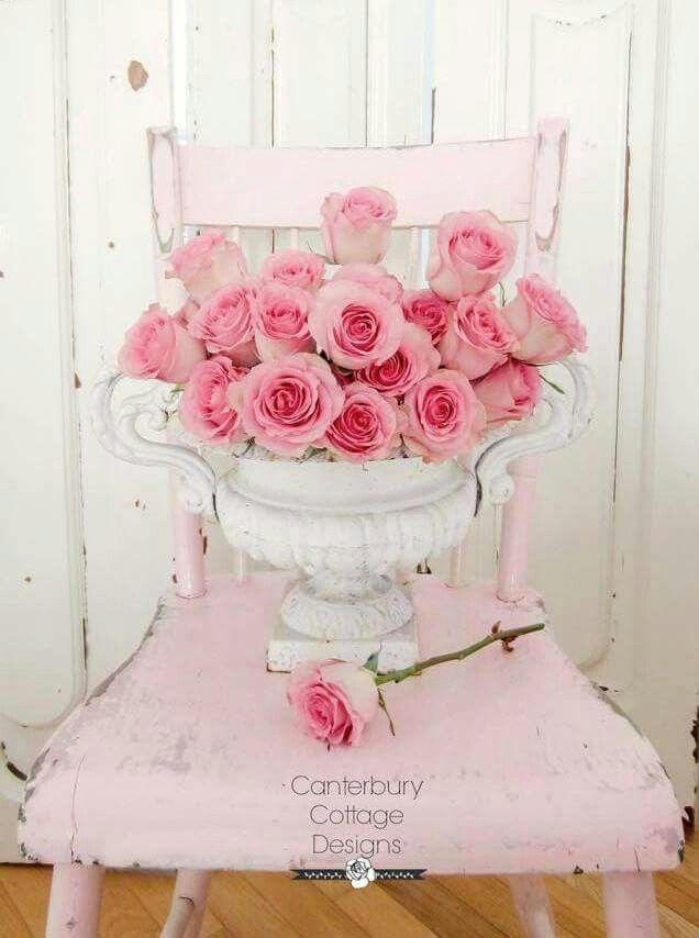 Pink Roses - Shabby Chic