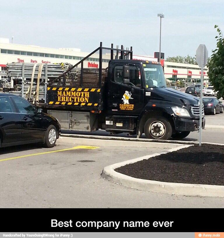Mammoth What Ifunny Best Funny Pictures Bones Funny Best Company Names