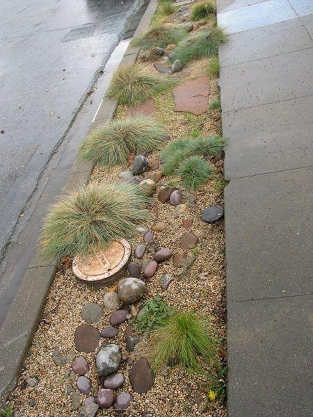 Parking Strip Landscaping With Rocks Succulent Landscape Design Sidewalk Landscaping