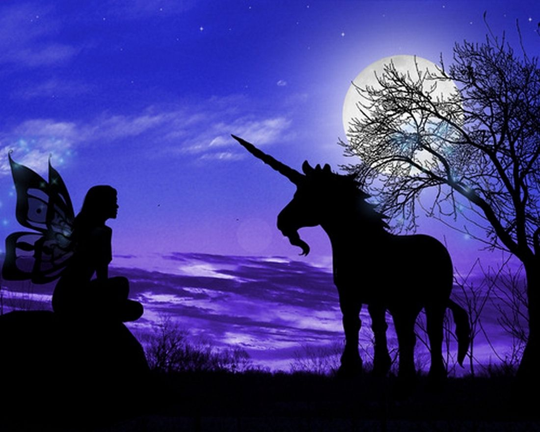 pretty  unicorn and fairies fairy wallpaper unicorn