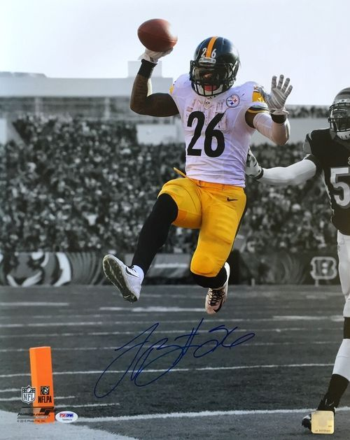 Le'Veon Bell Signed 16x20 Pittsburgh Steelers Spotlight Touchdown Photo PSA