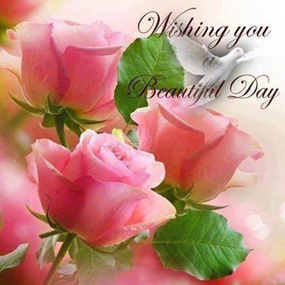 Wishing You A Beautiful Day Beautiful Day Quotes Flower Quotes Good Morning