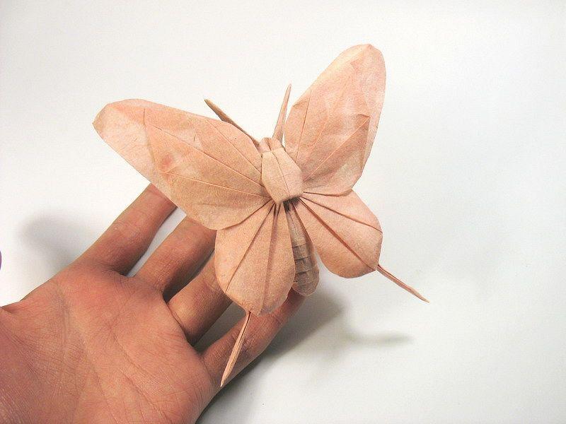 [Photos] The Vietnamese Origami Master Turning Paper Into Lively Artwork - Saigoneer