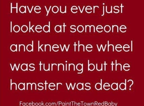 Witty Quotes Pinterest: Best 25+ Sarcastic Sayings Ideas On Pinterest