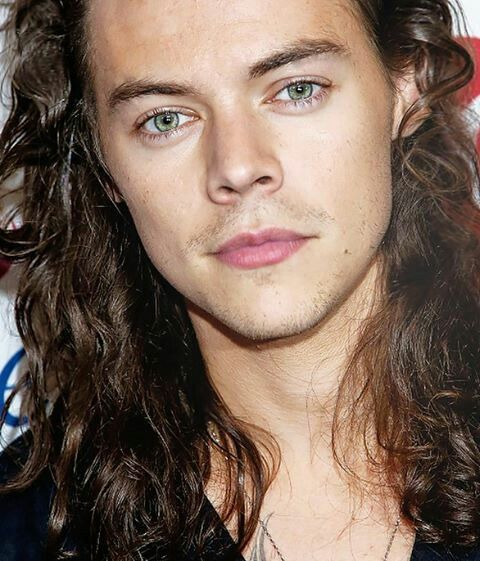 Eyes Lips Hair Nose Ears Jaw Eyebrows Skin Him Harry Styles Eyes Harry Styles Long Hair Harry Styles Imagines