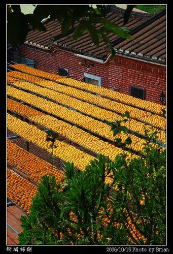 新竹新埔曬柿餅 @ 布萊恩:觀景窗看世界。美麗無限 :: 痞客邦 PIXNET ::