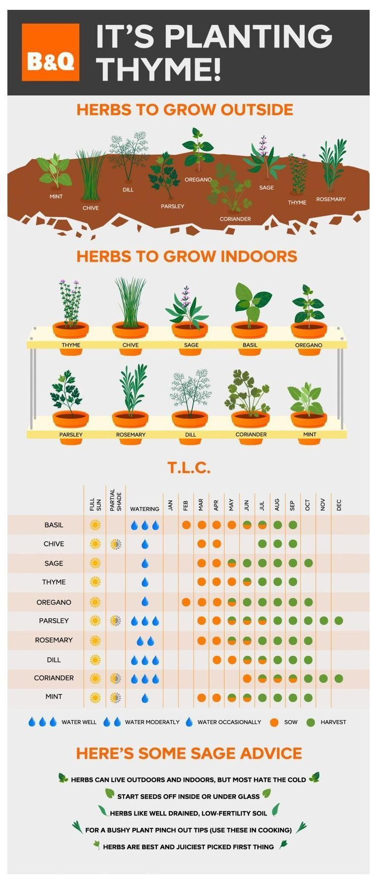Create A Garden To Remember With This Useful Advice. | Herb Garden Indoor | Vertical Herb Gardens | Herb Planter Ideas | Companion Planting Herbs In Pots. #growyourownfood #nochemicals #vegetablegardening #outdoorherbgarden