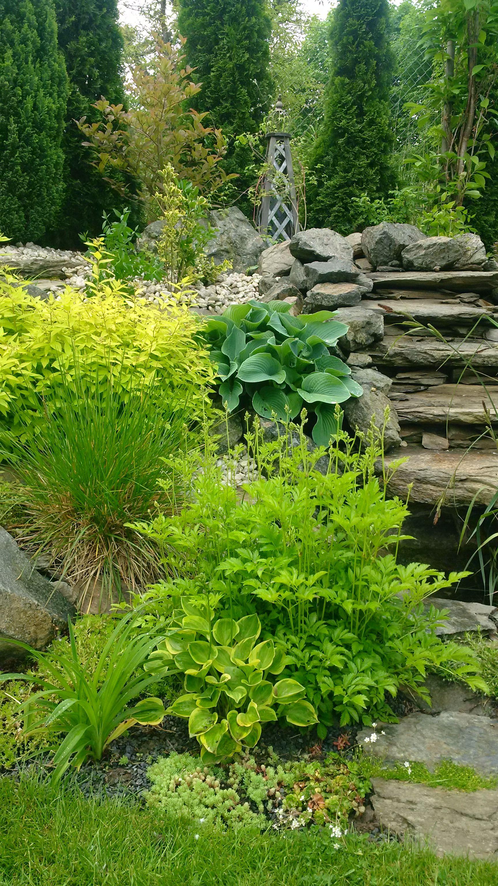Garten Gestalten, Pflanzen, Garten Am Hügel, Garten Pflaster, Waldgarten,  Landschafts Design, Zen Gärten, Schattengarten, Container Garten