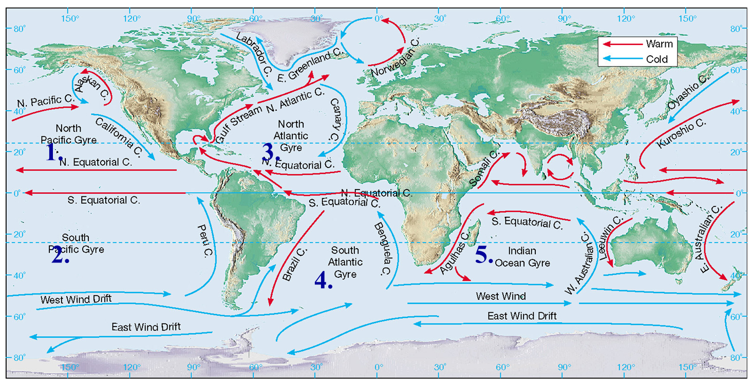 Pin by Mary Cate Bernal on Work Ideas | Ocean currents map ...