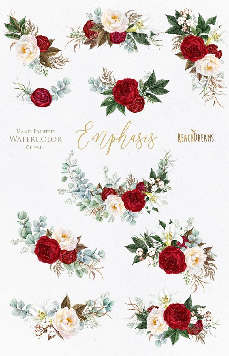Feuille D Eucalyptus Bouquet clipart aquarelle. bouquets de fleurs pivoines bordeaux
