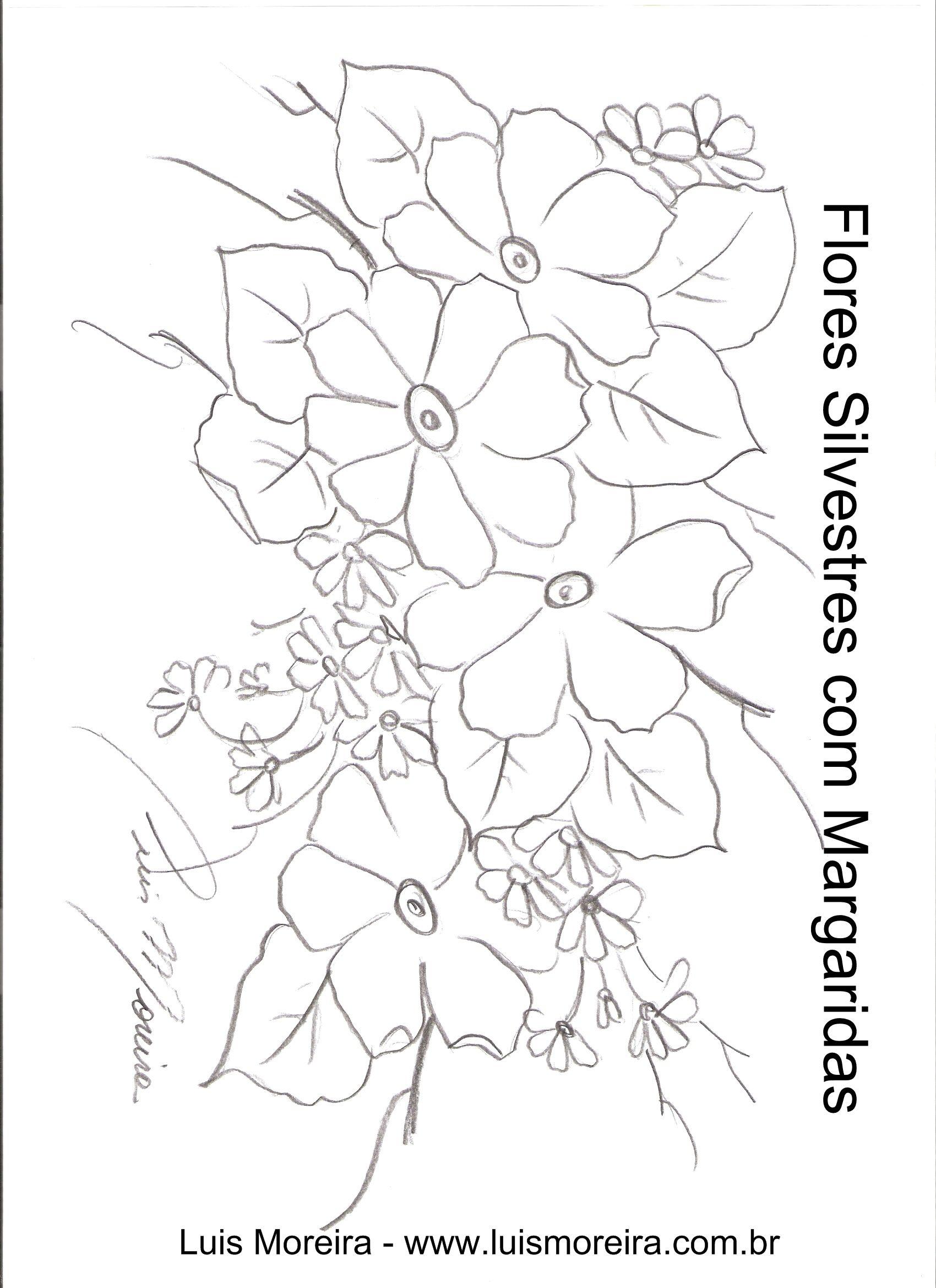 silvestre margaridas.jpg (1700×2338) | Dibujos y pinturas ...