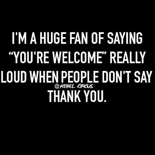 Sarcastic You Re So Funny Meme : You re welcome yelled with snark … pinteres…