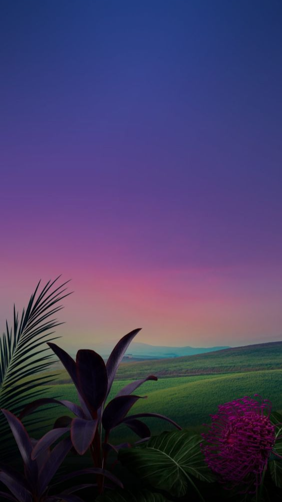 Backgrounds with beautiful nature
