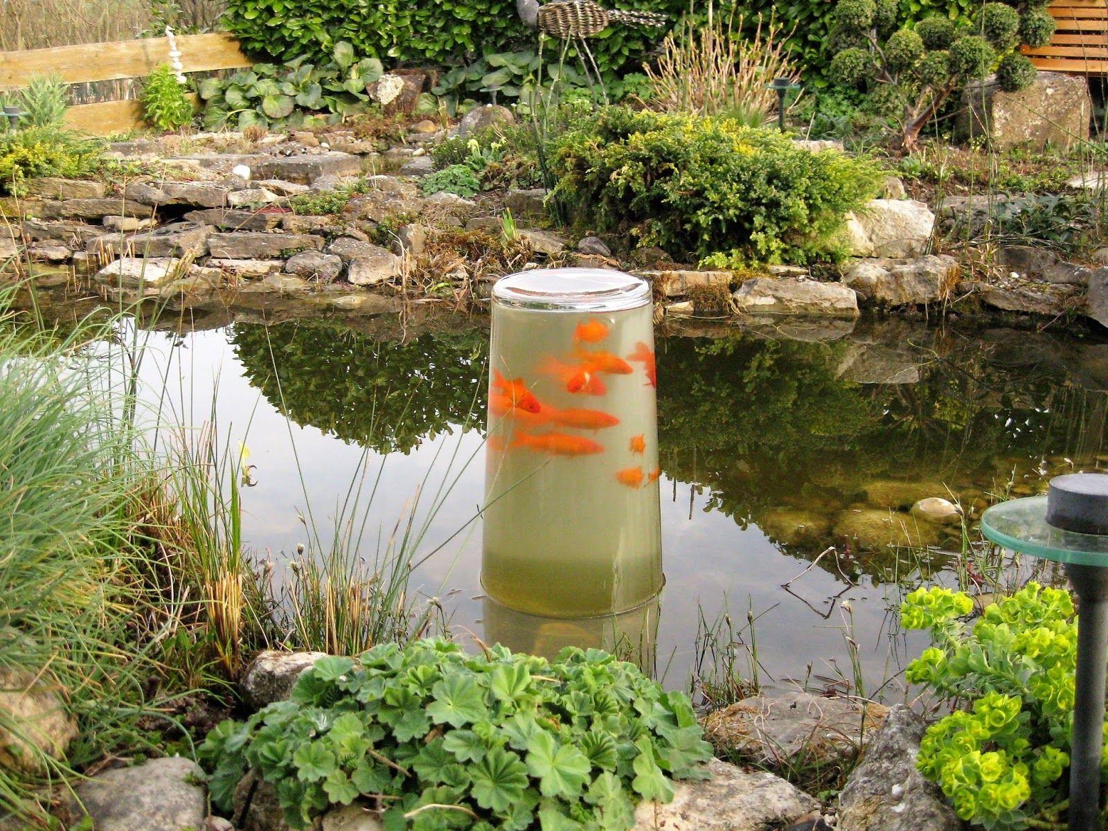 Goldfisch Aussichtsturm Diy Projekte Im Garten Garden Garten