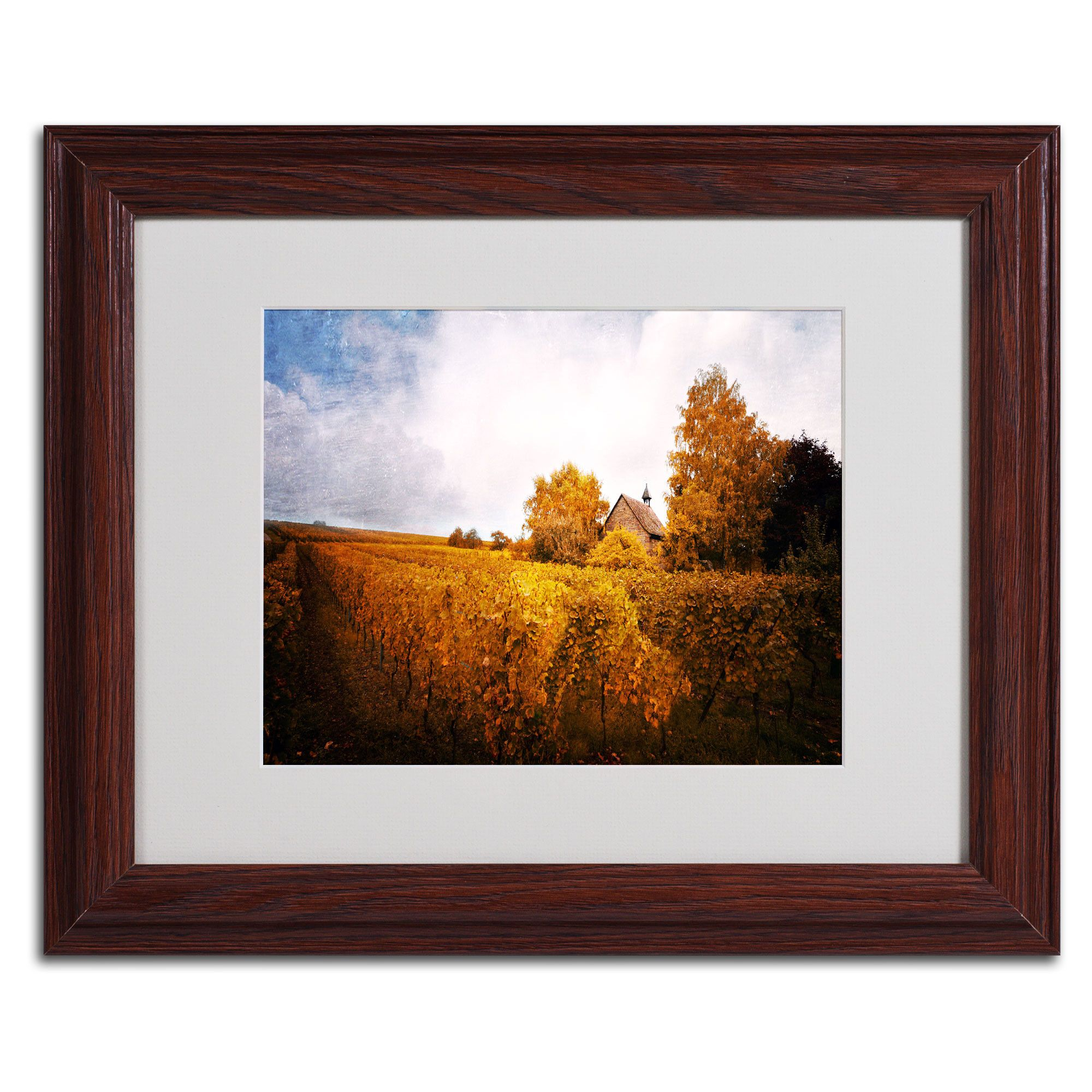 Light in Vineyards\' by Philippe Sainte-Laudy Matted Framed ...