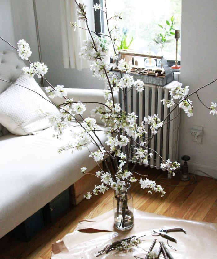 white cherry blossoms in brooklynerin boyle ; gardenista
