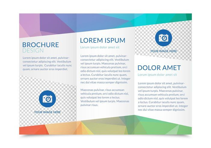 Free Tri Fold Brochure Vector Template  Graphic Design